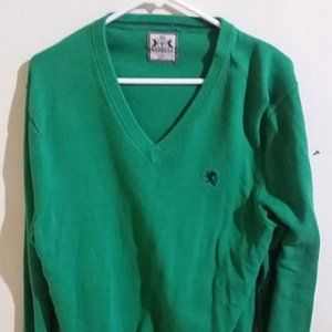 Express Green V-Neck Sweater